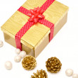 Gift box with ribbon and decoration — Stock Photo