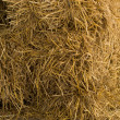 Stock Photo: Dry yellow hay
