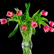 Stock Photo: Pink tulips in clear vase
