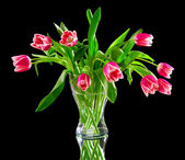 Pink tulips in a clear vase — Stock Photo