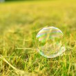 Stock Photo: Soap bubble on grass