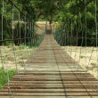 Rope bridge. — Stock Photo