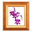 Foto Stock: Flower frame.