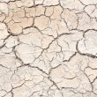 Crack in earth climate aridity. — Stock Photo #30828937