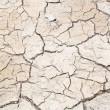 Crack in earth climate aridity. — Stock Photo #30829271