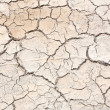 Crack in earth climate aridity. — Stock Photo #30829279