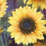 Sunflower plastic. — Stock Photo