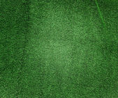 Beautiful green grass texture — Stock Photo