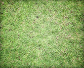 Greensward football field background — Stock Photo