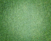 Golf Course Green lawn — Foto de Stock