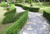 Tract Ornamental Public Gardens — Stock Photo
