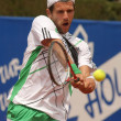Austrian Jurgen Melzer in action — Stock Photo
