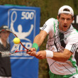Royalty-Free Stock Photo: Austrian Jurgen Melzer in action