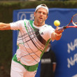 Austrian Jurgen Melzer in action - Stock Photo