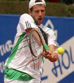 Austrian Jurgen Melzer in action — Stock Photo