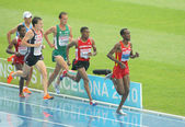 Competitors of 5000m — Stock Photo