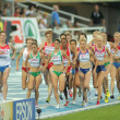 Stock Photo: Competitors of 5000m Women
