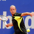 Belgian tennis player Xavier Malisse - Stock Photo