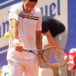 Stock Photo: Romanitennis player Victor Hanescu
