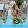 Постер, плакат: USA synchro swimmers team