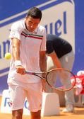 罗马尼亚网球选手维克托 hanescu — 图库照片