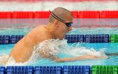 Hungarian World champion Laszlo Cseh — Stock Photo