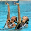 Stock Photo: Mexicsynchro swimmers MarianCifuentes and Isabel Delgado