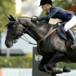 Stock Photo: AngelicAugustsson in action rides horse Walter 61