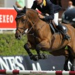 Stock Photo: Cassio Rivetti of Ukraine in action rides horse Verdi