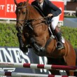 Eugenio Corell in action rides horse Apolo 817 — Stock Photo