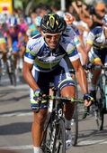 Orica Greenedge Australian cyclist Allan Davis — Stock Photo
