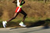 Afrikaanse loper benen — Stockfoto