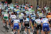 Bisikletçiler paketi — Stok fotoğraf