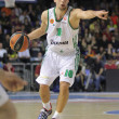 Roko Ukic of Panathinaikos - Stock Photo
