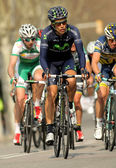 Jose Herrada Movistar Team — Stock Photo