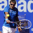Stock Photo: Spanish tennis player Tommy Robredo