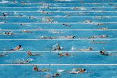 竞争游泳池 — 图库照片