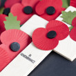 Stock Photo: Remembrance Day