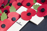 Remembrance Day — Stock Photo