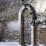 ������, ������: Snowy Scene