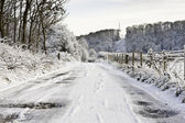 Snowy Scene — Stock Photo