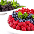 Blueberry, rasberry, cranberry and mulberry — Stock Photo #23200402