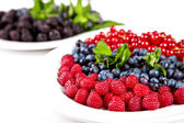 Blueberry, rasberry, cranberry and mulberry — Stock Photo