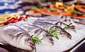 Group of fish served on ice — Stock Photo