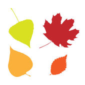 Set of autumn leaves isolated — Vector de stock