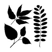 Set realistic isolated plant leaves — Vector de stock