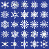 20 Vector SnowFlakes — Stock Vector