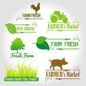 Fresh from the farm — Stock Vector