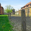 Death camp Auschwitz - Stock Photo