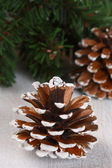 Christmas composition with cones and spruce branches — Stock Photo
